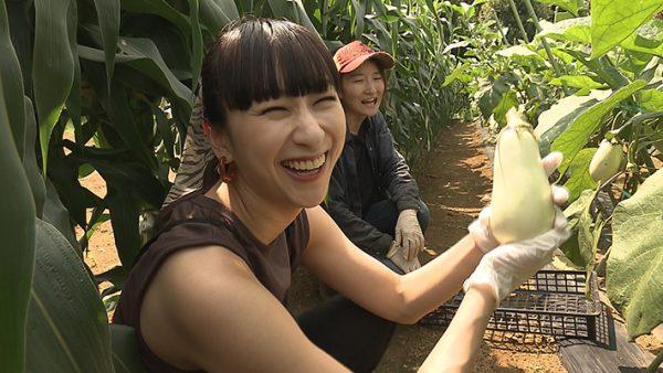 【放送されました】ごはんジャパン『東大卒の女性農家が作る夏野菜』
